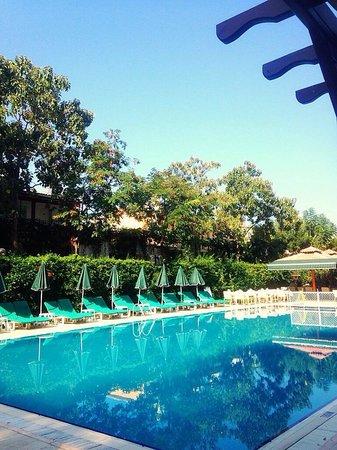 Perdikia Beach Hotel: The pool area