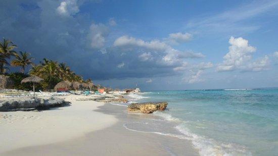 Gran Caribe Club Coral: UNA PARTE DI SPIAGGIA