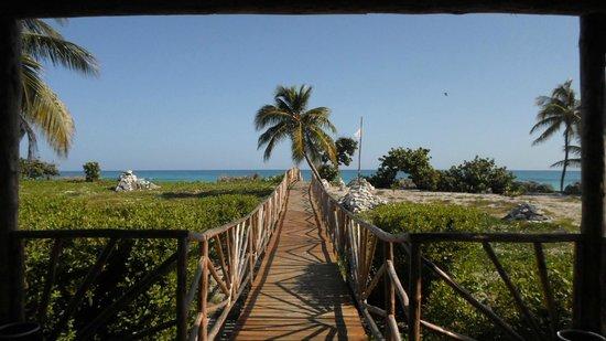 """Gran Caribe Club Coral: VISTA DAL RISTORANTE DELLA SPIAGGIA """"RANCHON"""""""