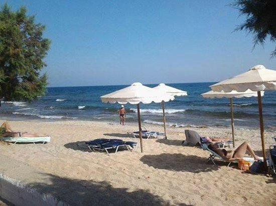 Albatros Spa Resort Hotel: пляж в Херсониссосе