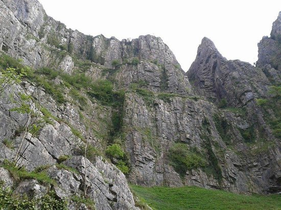 Cheddar Caves & Gorge: View from the bottom... keep an eye out for the mad goats!!