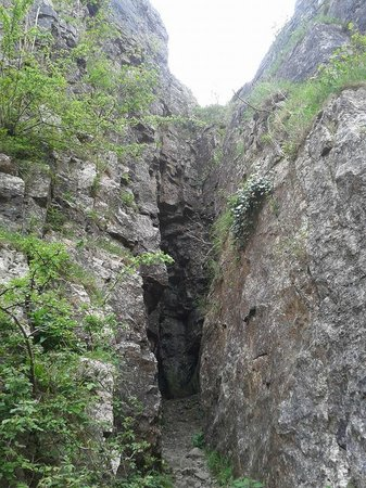 Cheddar Caves & Gorge: Nooks to Explore