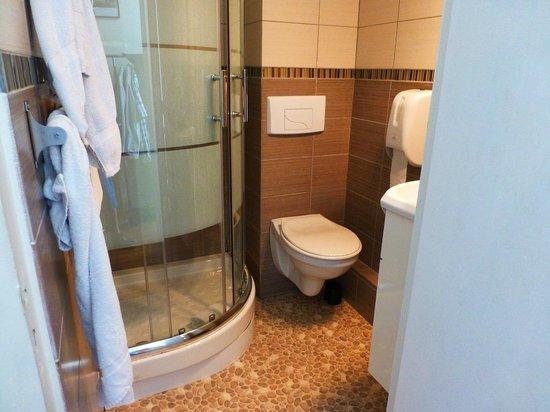Hotel de la Paix: Dusche WC