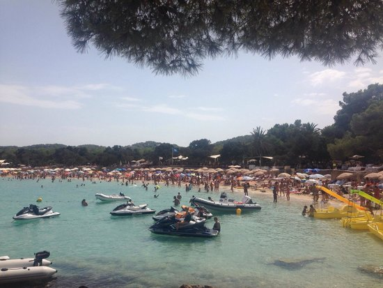 Playa de Cala Bassa: Pretty busy - make sure to arrive early to get a sun lounger as many of them are reserved for th