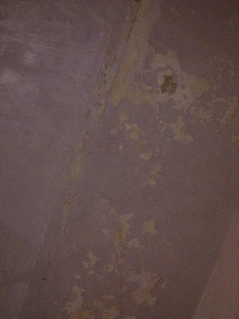 Shanti Lodge: Room Wall