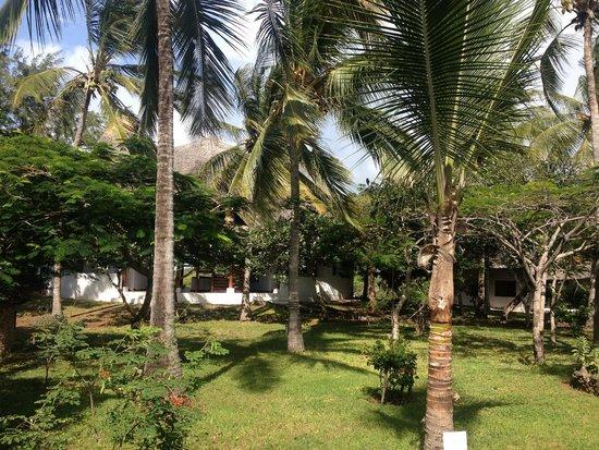 Temple Point Resort: giardino tropicale