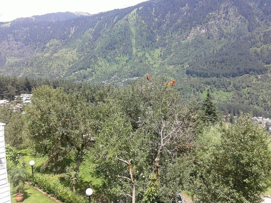 The Manali Lodge: View from rooms balcony