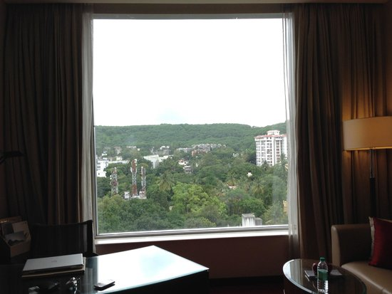 JW Marriott Hotel Pune: The large window gives a good view outside