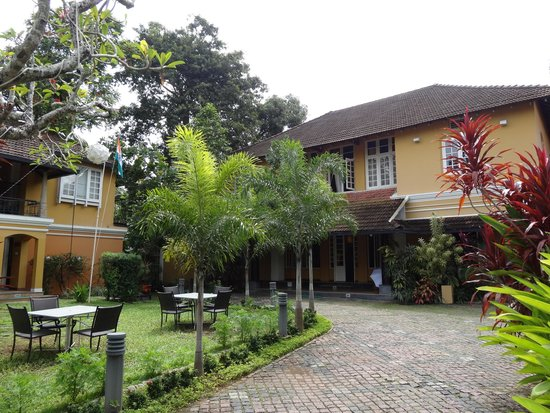 Tea Bungalow : The hotel grounds