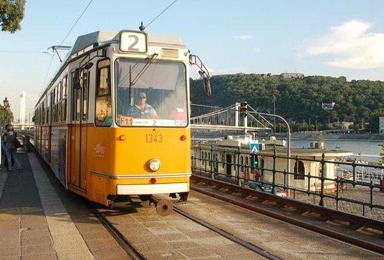Fungarian: Budapest Public Transportation Tour - The Panorama Tram