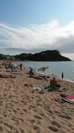 Hotel GHT Aquarium & SPA: Plage de Fenal