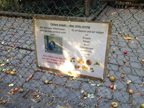 Wildpark Dusseldorf: was darf gefüttert werden