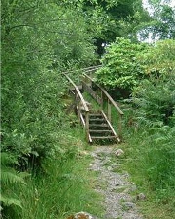 Inverawe Smokehouse: Steps to the Lilly Loch - wind your way round the Argyllshire country estate.