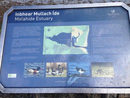 InterContinental Dublin: Panneau illustrant la faune