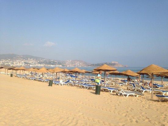 Mehari Tabarka : Spiaggia con lettini sempre a dispisizione.