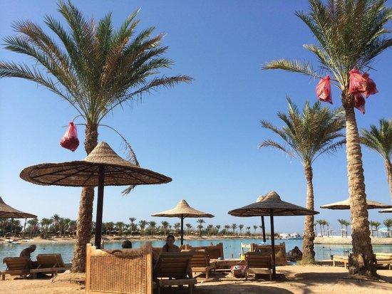 Lilly Land Beach Club Hotel : la spiaggia