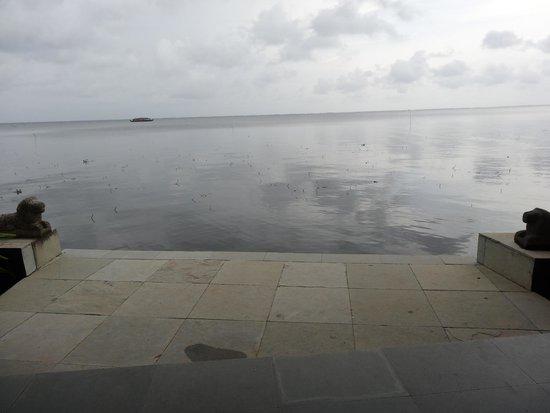 Purity at Lake Vembanad: The surreal beauty of Lake Vembanad