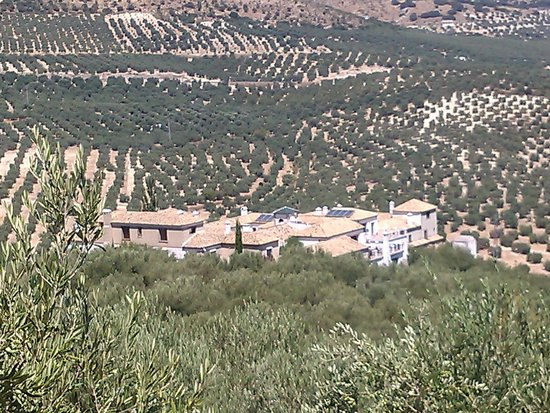 Hacienda Minerva: L'hacienda vue du village
