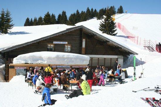 Ski Bar Schneider