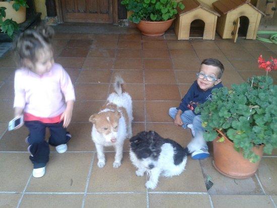 Posada la Vieja Escuela: Mis peques con las 2 perritas encantadoras