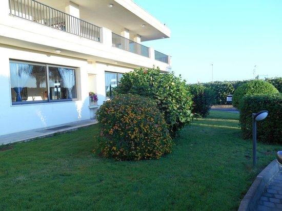 Villaggio Stella Marina : Giardino