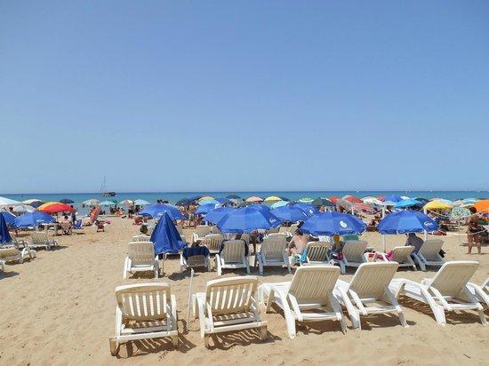 Villaggio Stella Marina : Spiaggia