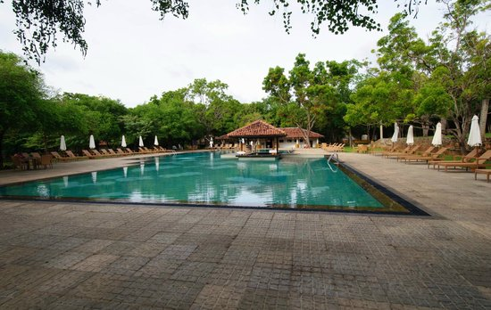 Amaya Lake : Nice pool