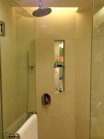 Pan Pacific Xiamen : Rainfall shower with spray handle.