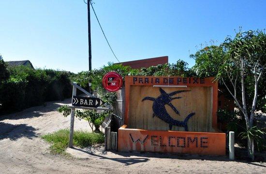 Praia de Peixe: Welcome