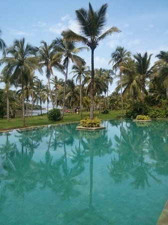 Vivanta by Taj Bekal: The pool