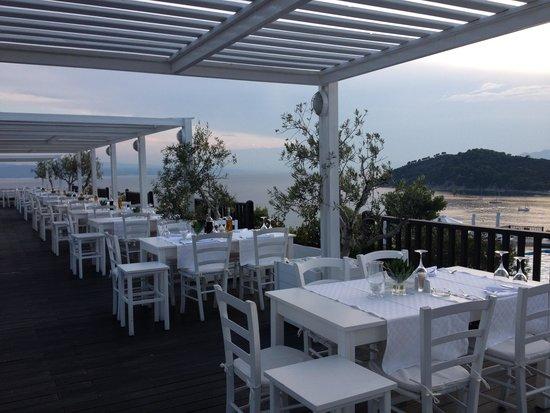 Skiathos Palace Hotel : the white view terrace