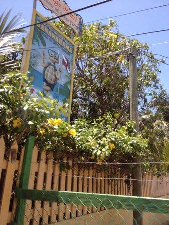 Bananarama Beach and Dive Resort: Entry