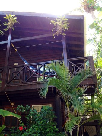 Bananarama Beach and Dive Resort: View of our room (20)