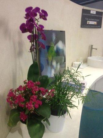 Les Thermes de Saint Gervais Mont Blanc : Orchidées