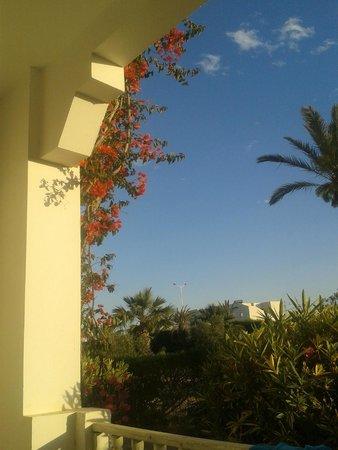 Djerba Sun Club: Der Ausblick aus meinem Zimmer