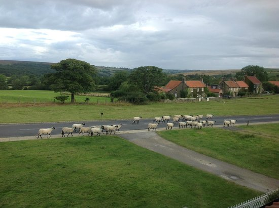 Fairhaven Country Guest House: This is the view from room nr 2