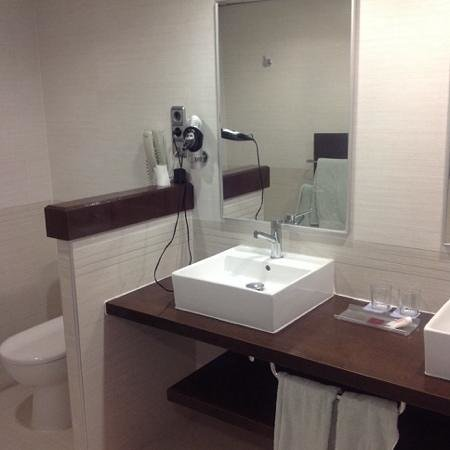 Hotel Flamingo Oasis: Club room bathroom