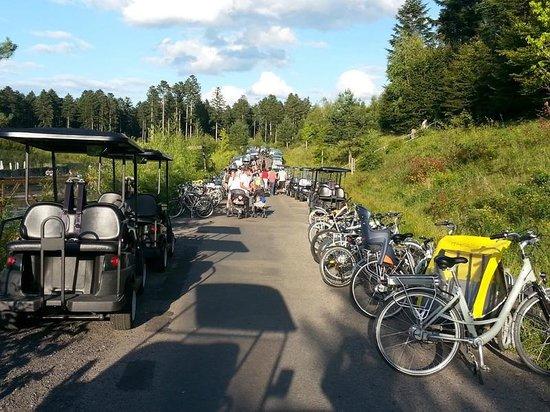 Center Parcs - Domaine des Trois Forets: Les alentours du centre sont vites saturés par les nombreux vélos et voiturettes électriques.