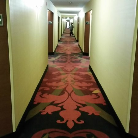 Hampton Inn Atlanta - Cumberland Mall / NW: Behold the Las Vegas style carpet.
