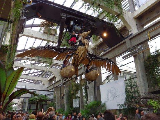 Les Machines de L'ile : 鳥メカ