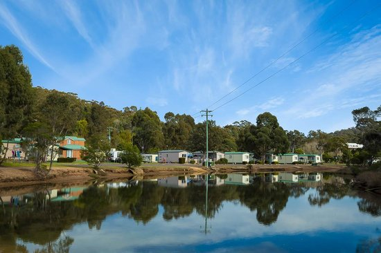 Eden Beachfront Holiday Park : Eden Beachfront - Creek Cabins