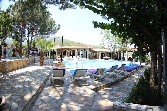 Atilla's Getaway : havuz kenarı