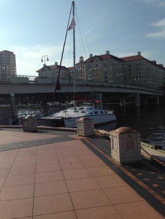 Tampa Bay Sailing Tours: 5*