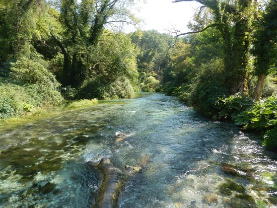 Blue Eye (Syri Kalter) : Stream flowing past fallen tree trunk