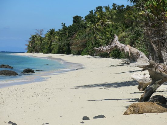 Vomo Island Resort: Pristine and remote beach