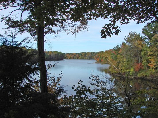 Lake cohasset picture of mill creek park canfield tripadvisor for Parks garden center canfield ohio