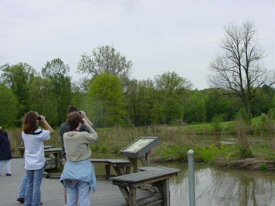 Metroparks farm picture of mill creek park canfield tripadvisor for Parks garden center canfield ohio