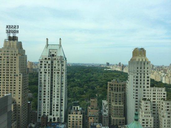 Le Parker Meridien New York: 部屋からの眺め