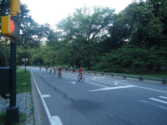 Central Park: Cycle is the best way to go round the park.