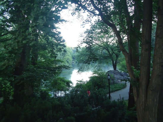 Central Park: Early morning magic among lake and greens.